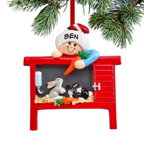 Personalized Loves Bunnies Christmas Ornament