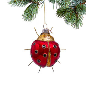 Personalized Ladybug Christmas Ornament
